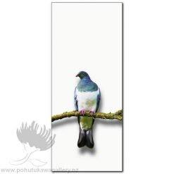 Kirk O'Donoghue canvas print Wood Pigeon NZ Birds New Zealand