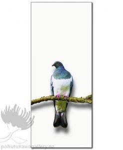 Wood Pigeon Oil
