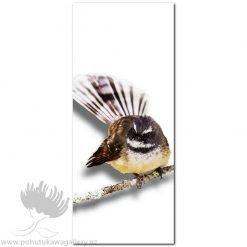 Kirk O'Donoghue canvas print Branch Fantail NZ Birds New Zealand