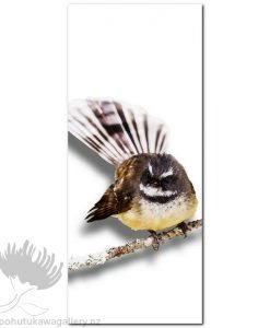 Kirk O'Donoghue canvas print Branch Fantail NZ Birds New Zealand