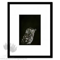 Captain Hooter Owl by Jane Crisp - Art Prints New Zealand