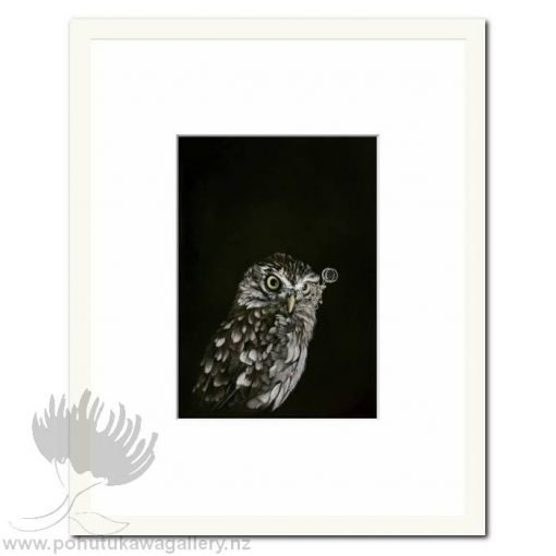 Captain Hooter Owl by Jane Crisp - Art Prints New Zealand