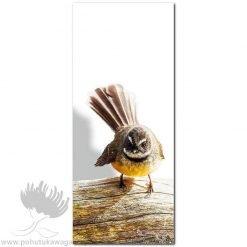 Kirk O'Donoghue canvas print Log Fantail NZ Birds New Zealand