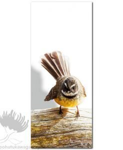 Kirk O'Donoghue canvas print Log Fantail NZ Birds New Zealand