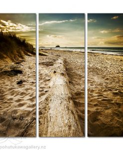 Kirk O'Donoghue Canvas Print - Fish and Chips (Omanu) Mount Maunganui NZ