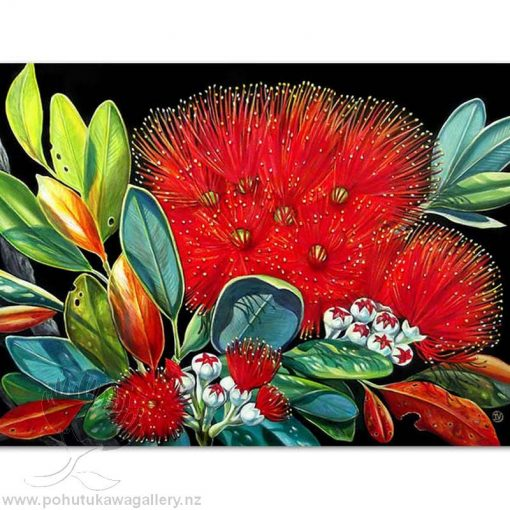 new zealand gift card