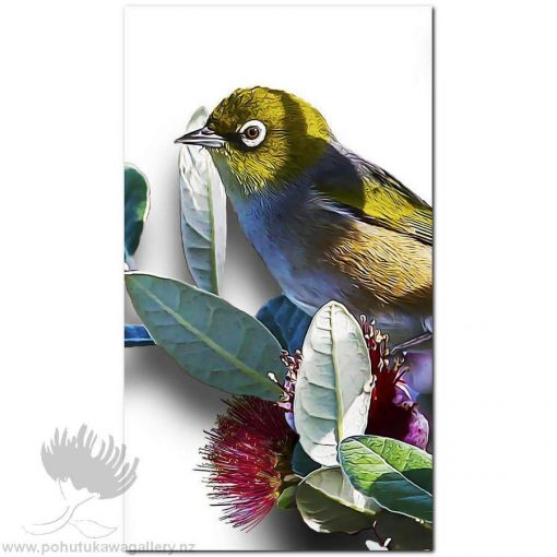 new zealand birds art print