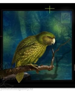 Kakapo by Julian Hindson - Art Prints New Zealand NZ