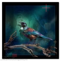 Tui 3 by Julian Hindson - Art Prints New Zealand NZ