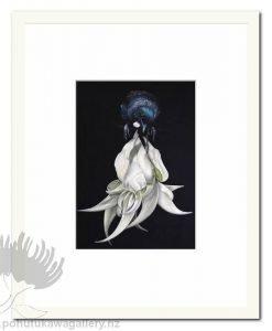 Tui And White Kakabeak by Jane Crisp - Art Prints New Zealand