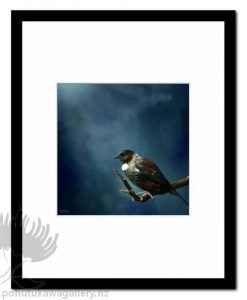Tui Tane by Julian Hindson - Art Prints New Zealand NZ