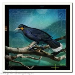 Huia 3 by Julian Hindson - Art Prints New Zealand NZ