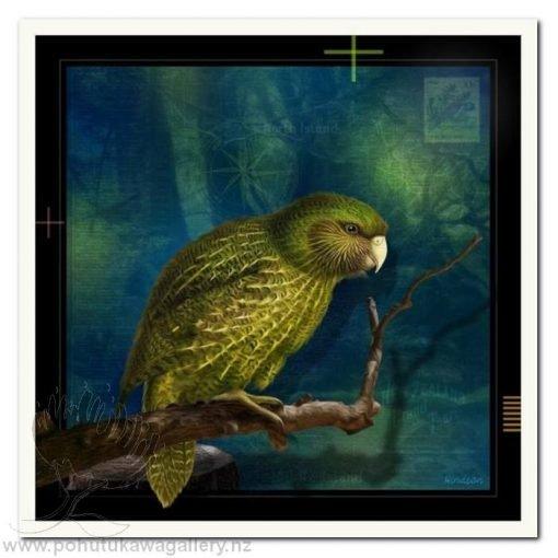 Kakapo by Julian Hindson - Art Prints New Zealand NZ