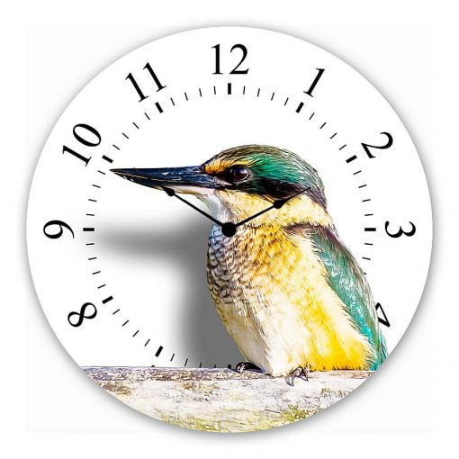 kingfisher Wall clock new zealand art gift