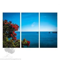 Kirk O'Donoghue Triple Canvas Print - Pohutukawa Cove