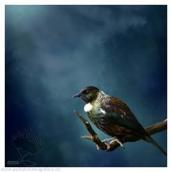 Tui Tane Cards new zealand artists