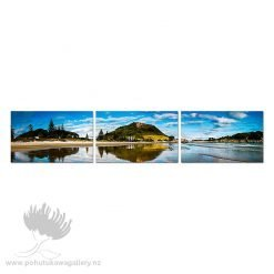 Mount Pano Triptych
