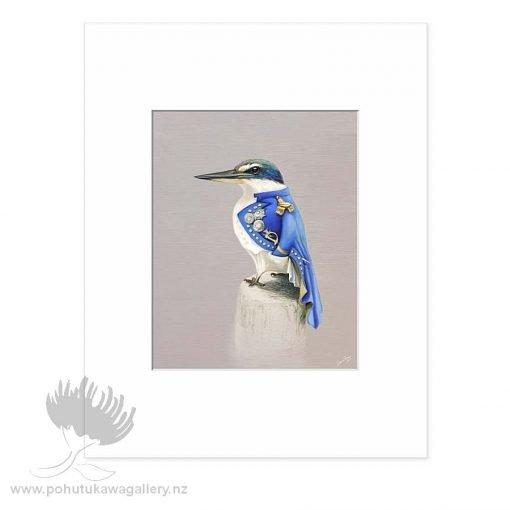 NZ Kingfisher Nelson by Bonnie Fraser - Art Prints New Zealand
