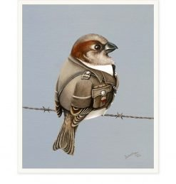 Sparrow Guard by Bonnie Fraser - Art Prints New Zealand